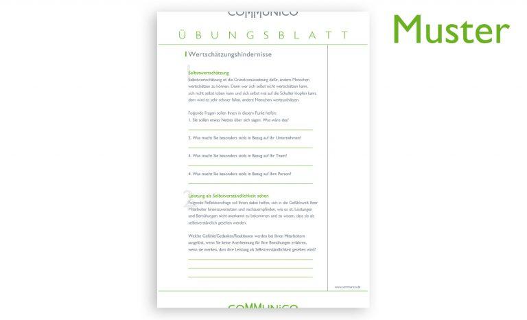 communico-ecampus-online-seminar-begeisterung-PDF-Beispiel-1